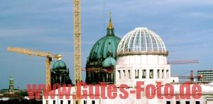 - Alle Rechte vorbehalten: 0170-54 57 112www.Gutes-Foto.de